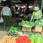 Dali, des légumes
