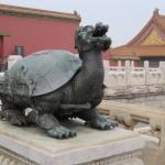 La tortue-dragon, symbole de longévité et de réussite