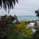 Napier - Vue sur la baie