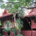 Maison de Jim Thompson et sa végétation