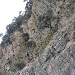 Bruny Island - falaise 200m haut