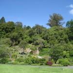 Dunedin - Le jardin botanique