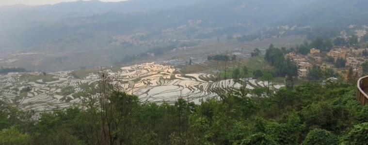 Pugao vue sur les rizières