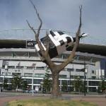 Melbourne - Une vache dans un arbre