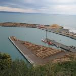 Napier - Le port