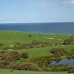 Champs et vue sur la mer aux environs d'Oamaru