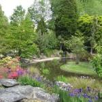 Oamaru et son jardin botanique