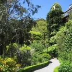 Wellington et son jardin botanique